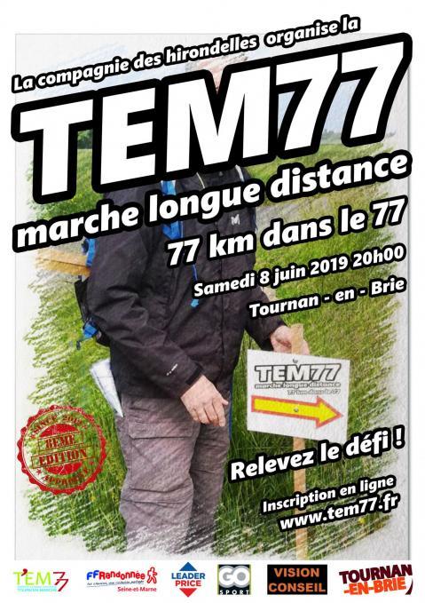 Affiche Tem77 2019